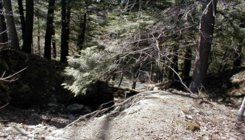 Wolf Hollow Gorge