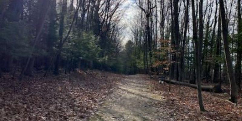 Andersen Park Trail